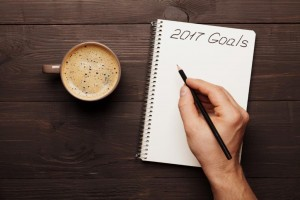 goals-2017